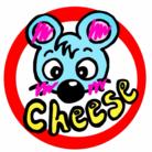 cheese ( cheese0221 )
