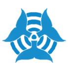 イルカテクニカ ( kylppp )