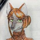 かじか@鮎掛鰍 ( kazika647 )