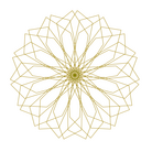 illustrator_E14
