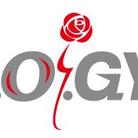 K.O.GYM ( kitaioffce )