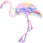 Flamingo Parade ( Abracadabra )