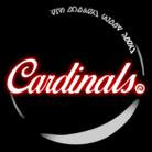 Cardinals online shop ( ARMS_Wataru )