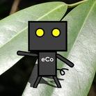 ecoecoeco