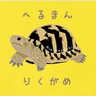 はやしりえ ( riehayashi )