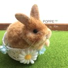 POPPE*Rim.羊毛フェルト ( poppe_y )