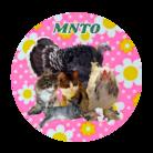 mnto雑貨洋品店 ( mnto )