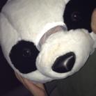 パンダのお家 ( panda_ouchi )