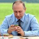 Владимир ( VoLTE_Samsung )