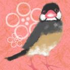 西瓜文鳥のおみせ。 ( suicabuncho )