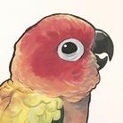 PIPAPU