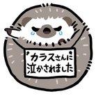 はちくわ ( hati000 )