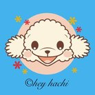 ©hey hachi ( heyhachi )