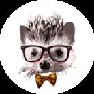 Loysa_Suunnittelu ( pota_siili )