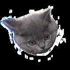岩津猫屋敷 ( chibimuck )
