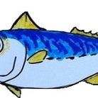 さかなや四代目 ( fishmonger )
