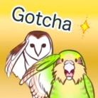 ヒナァユ店舗 ( uyaanih )