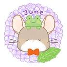 わん。(・Y・=)β ( wanroom )