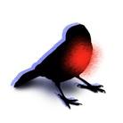 ライブバード ( live-bird )