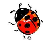 Ladybugcolor