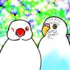 Lily bird ( NqM5yeeoGe0luDe )