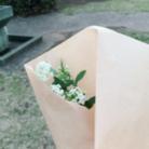 幸せの花と溶ける自然 ( tokeru_siawase )
