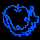 ワニチャレンジ ( wanichallenge )