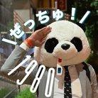 パンダさん🐼ぜっちゅ!!🐼💕🐼💕🐼💕🐼💕🐼💕🐼💕🐼💕🐼💕🐼💕 ( panda_zecchu )