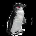 Little Penguin Souvenir ( little_penguin_phi )