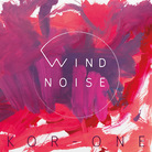 wind noise records ( wind_noise )