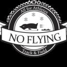 no flying penguin ( moyamoyamizu )