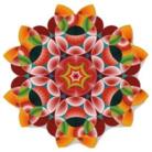 Flower of life ( Flowero96591864 )