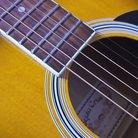 葉崎 ( hazaki_guitar )