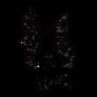 Witapin Wonderland ( NitaWon )