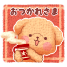 かまちょトイプードル ( kamachoToypoodle )