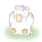 花鳥ウタ ( uta_ichirin )