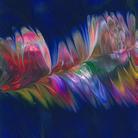 アオムラサキ ( Feather )
