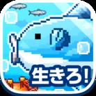 生きろ!マンボウ! ( manbo_app )