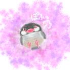 ましゅ庵 ( purplepanda )