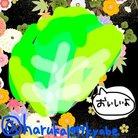 魔法少女きゃべっこりぃ☆マギカ@なにもうまくいかないシスターズ ( haruka1997kyabe )