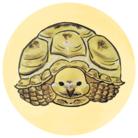 動物ガラス絵描きのお店 ( Ri-AnimalArt )