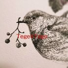 Tege*Tege ( tege_tege219 )
