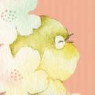 ちゅうこ☀︎ 5/18,19デザフェスA43,44 * 5/26関西コミティアP37,38 ( makichuko )