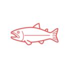 鮭 ( _SWEETMILKSHAKE )