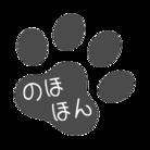 おもしろTシャツ『のほほんショップ』 ( nohohon-shop )