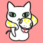 はるか ( haruka_0528 )