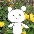 クマのポコちゃんkuma_no_pocochan ( rurusanpocochan )
