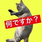 morokoshi.com ( shibamana0618 )