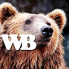 WORKING BEAR ( WORKINGBEAR )