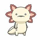 ももにくす ( axolotl2013 )